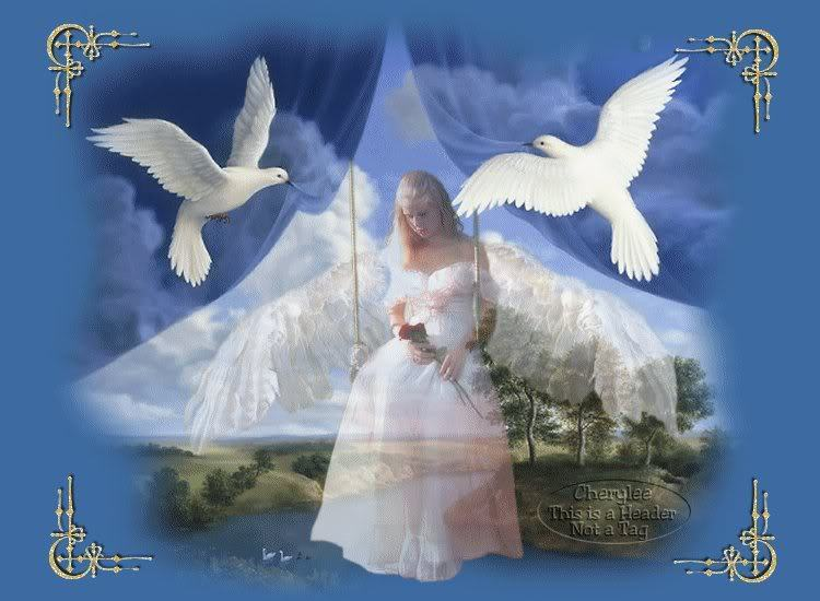white-angel-angels-20261433-750-550.jpg